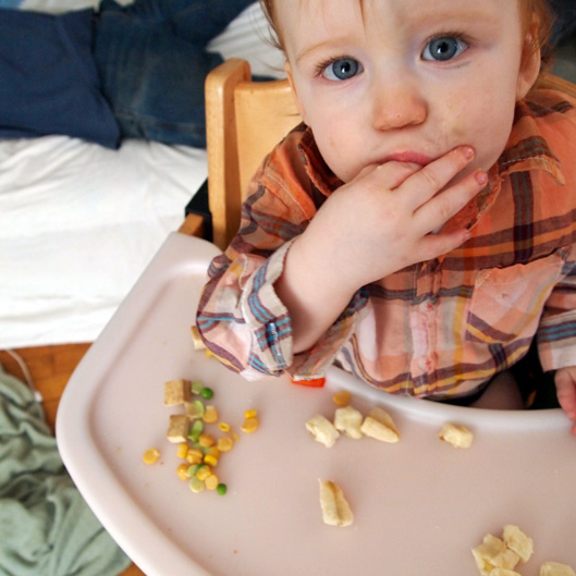 Feeding Vegan Babies and Toddlers - Finger Foods