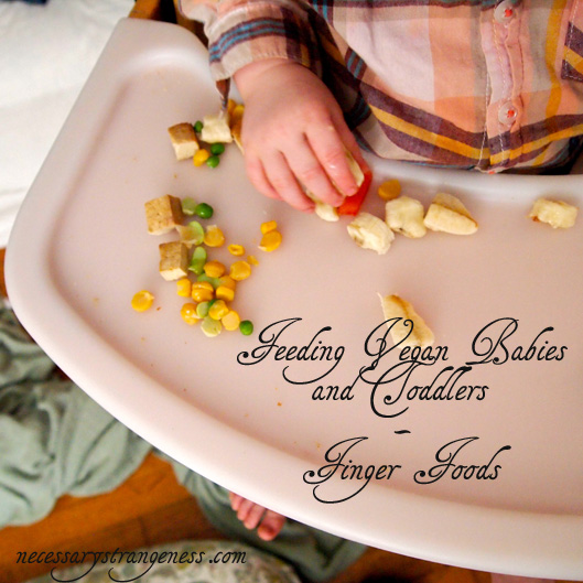 Feeing Vegan Babies and Toddlers - Finger Foods